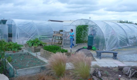 Ballybeg Horticulture Initiative